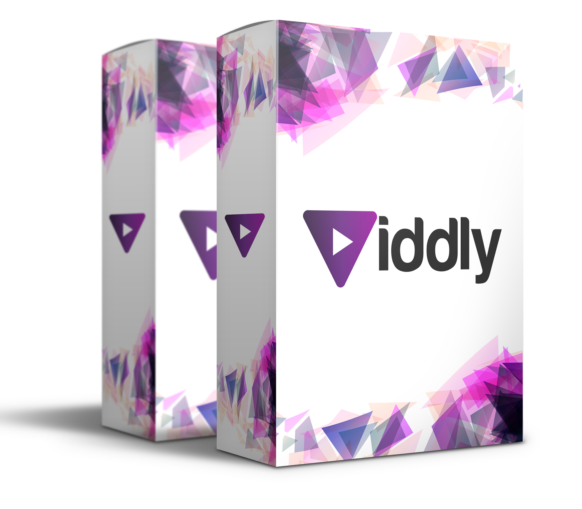 Viddly Review